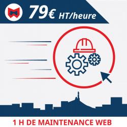1 h de maintenance pour votre site