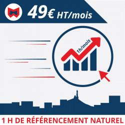 1 h de référencement naturel / mois
